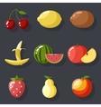 Fresh tasty fruit set apple cherry watermelon kiwi vector image vector image