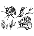 flower rose 2 vector image vector image