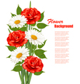 Flower Background With White Daisy and Red Roses vector image