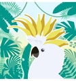 Cockatoo on the Jungle Background vector image