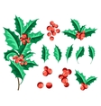 Christmas Holly Berry Set vector image