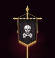 jolly roger jack pirate flag format vector image