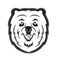 bear mascot for the sports team print on t-shirt vector image
