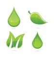 elegance eco leafs vector image