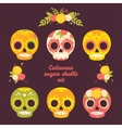 Colorful set of skulls vector image