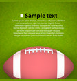 rugby ball on the field vector image