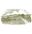 Woodcut Countryside vector image