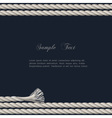 Background with marine rope vector image