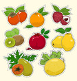 set of tropical fruit stickers vector image