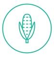 Corn line icon vector image