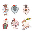 set of christmas cartoon lambs for your creativity vector image
