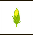 yellow corn in flat style isolated on white vector image