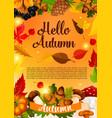 hello autumn poster template of fall season leaf vector image