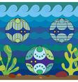 Mollusks vector image