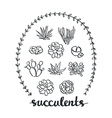 Succulent set cute Plants Sketched objects vector image