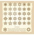 Vintage background with snowflakes set vector image