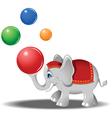 Elephant at the circus vector image