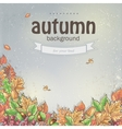 Image of autumn background with leaves chestnuts vector image