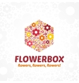 Logo flower box vector image