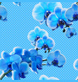 seamless pattern with blue orchids vector image