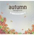 Image of autumn background with maple leaves oak vector image