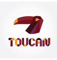 origami toucan vector image
