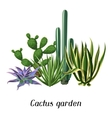 Card with cactuses and succulents set Plants of vector image
