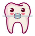 tooth with bracket character isolated icon vector image