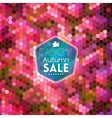 Colorful geometric background card violet wine vector image