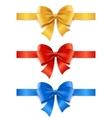 Satin Ribbon Set vector image