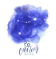astrology sign cancer vector image