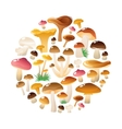 Forest Mushrooms Round Composition vector image