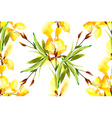Iris watercolor can be used as greeting card vector image