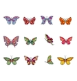 Set with different butterflies For your design vector image