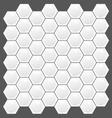 hexagon texture pattern vector image
