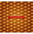 texture Wicker basket vector image vector image
