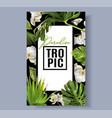 tropic orchid frame vector image