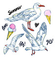 seabirds set of beautiful seagulls and icecream vector image