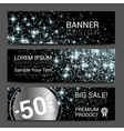 Horizontal Platinum Silver Dust Banners Set vector image