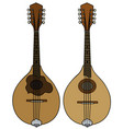 two classic mandolins vector image
