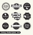 Fantasy Football Labels vector image