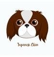 dog Japanese chin vector image