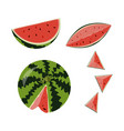 ed fruit watermelon vector image
