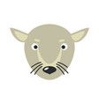 rat face in flat design vector image