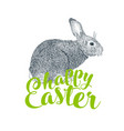easter rabbit and easter eggs vector image