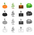 garden plot vitamins and other web icon in vector image