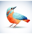 Watercolor bird isolated on white background vector image