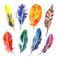 Watercolor hand drawn feather set vector image
