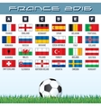 National Soccer Flags Ready for your Design vector image vector image