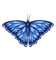 blue monarch butterfly isolated on white vector image
